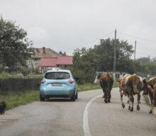 Roadtrip cu Renault ZOE până la Cuca-Măcăi